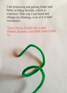 Pipe-Cleaner-Flexible